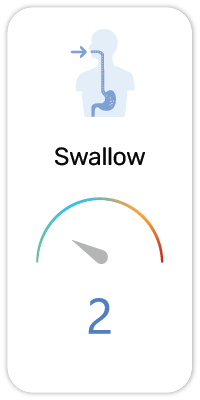 ISCE Swallow